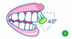 巴氏刷牙法步骤图解