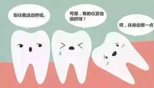 智齿和邻牙