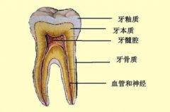 牙齿有裂纹遇冷热敏感,还有得救吗