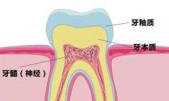 吃月饼牙齿痛怎么回事