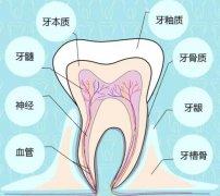 深龋可以直接补牙吗,成功率高不高?是不是补不好得做根管?