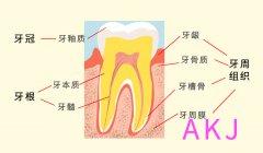 牙医真诚建议:牙齿保健一刻也不能落下