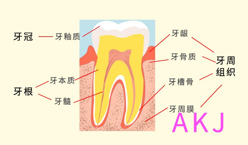 牙痛如何缓解